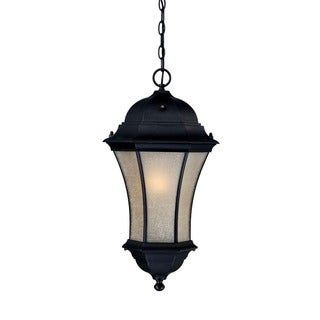 Waverly Energy Star Collection Hanging Lantern 1-light Outdoor Matte Black Light Fixture