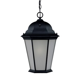 Richmond Energy Star Collection Hanging Lantern 1-light Outdoor Matte Black Light Fixture