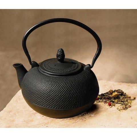 Cast Iron 3-liter 'Hakone' Teapot/ Wood Stove Humidifier