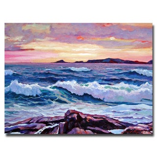 David Lloyd Glover 'California Sunset' Canvas Art