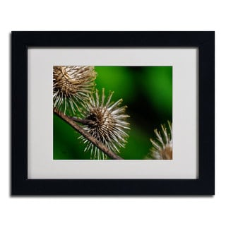 Lois Bryan 'Prickly' Framed Matted Art
