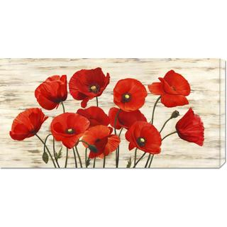 Global Gallery Serena Biffi 'French Poppies' Stretched Canvas