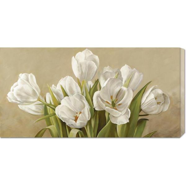 Global Gallery Serena Biffi 'Tulipani bianchi' Stretched Canvas
