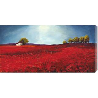 Global Gallery Philip Bloom 'Field of Poppies' Stretched Canvas