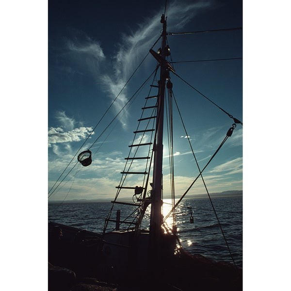 'Backlit nautical scenery, Canada' Photography Print Canvas Wall Art