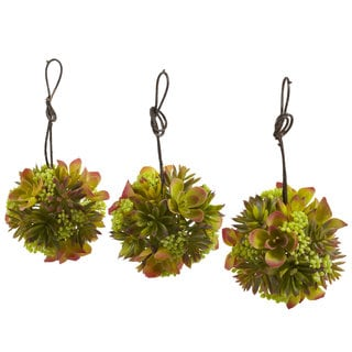 5-inch Mixed Succulent Hanging Balls (Set of 3)