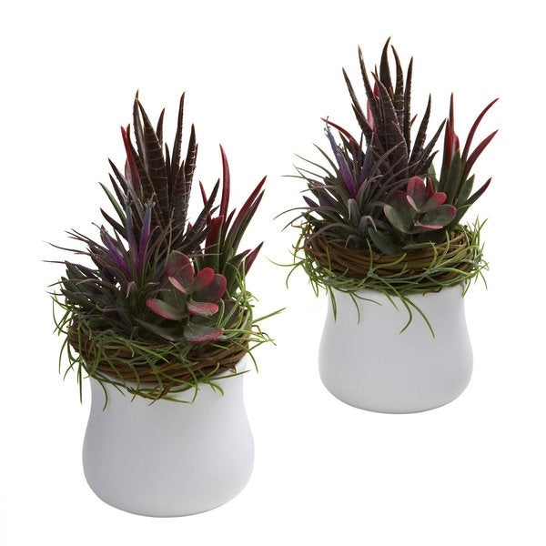 Mixed Succulent White Planter Decorative Plants (Set of 2)