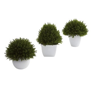 Mixed Cedar Topiary Collection Decorative Plants (Set of 3)