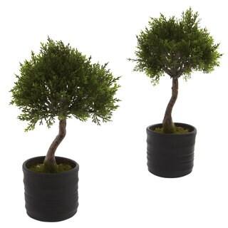 Cedar Bonsai and Planter Decorative Plants (Set of 2)