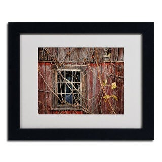 Lois Bryan 'Old Barn Window' Framed Matted Art