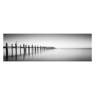 Moises Levy 'China Camp Panoramic' Canvas Art