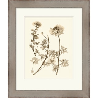 Vision Studio 'Nature' Open Edition Giclee Print