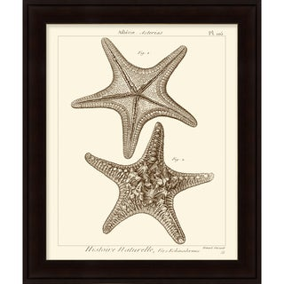 Vision Studio 'Starfish' Open Edition Giclee Print