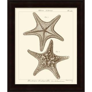 Vision Studio 'Starfish' Open Edition Giclee Print