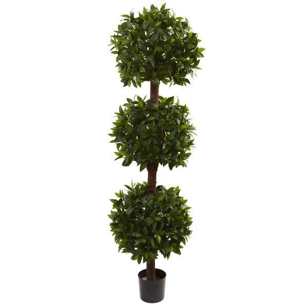 6.5-foot Sweet Bay Triple Ball Topiary