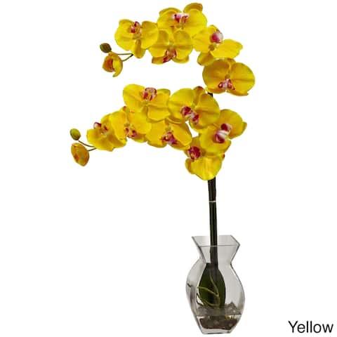 Phalaenopsis Orchid and Vase Arrangement