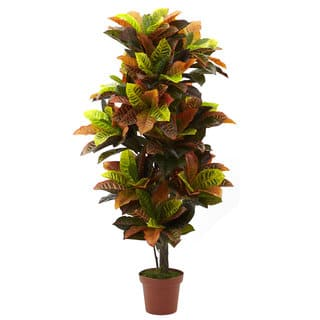 56-inch Croton Plant (Real Touch)|https://ak1.ostkcdn.com/images/products/8368565/8368565/56-inch-Croton-Plant-Real-Touch-P15674905.jpg?impolicy=medium