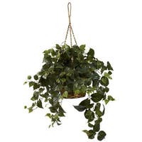 philodendron hanging basket uv resistant indoor outdoor free shipping today overstock. Black Bedroom Furniture Sets. Home Design Ideas