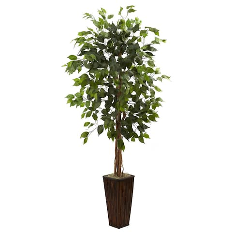 5.5-foot Ficus Tree with Bamboo Planter - Green