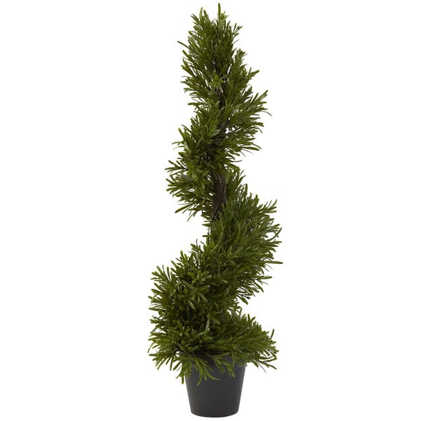 30-inch Rosemary Spiral Tree (Indoor/Outdoor)