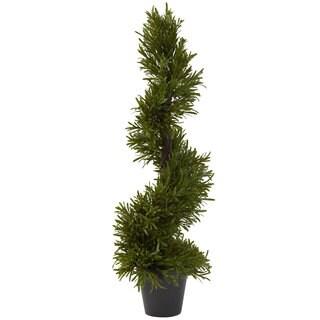 30-inch Rosemary Spiral Tree (Indoor/Outdoor)