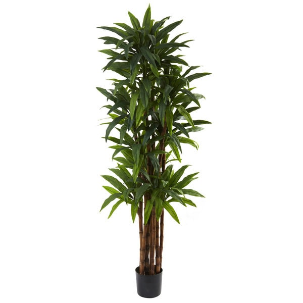 Nearly Natural 6 5 Foot Dracaena Tree Free Shipping