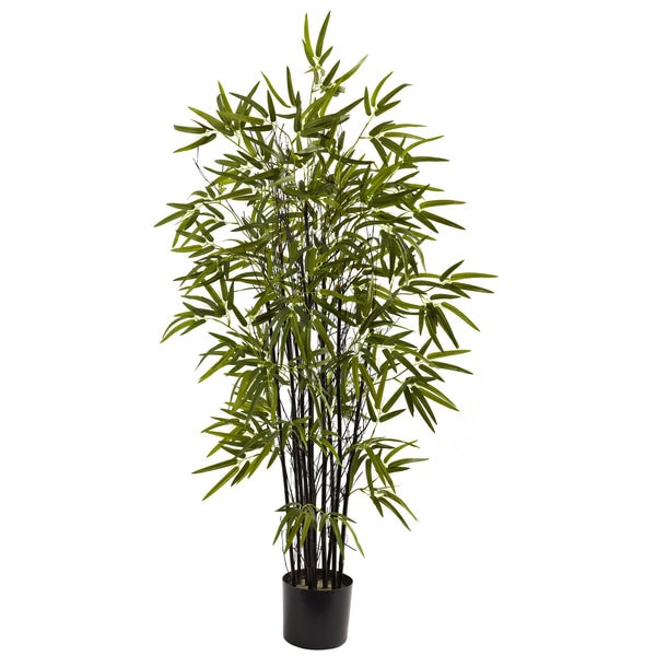 4-foot Black Bamboo Tree
