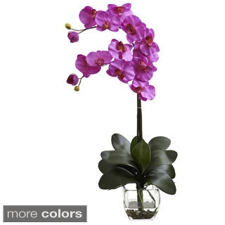 Double Phal Orchid with Vase Arrangement