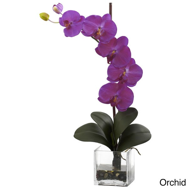 Giant Phal Orchid with Vase Arrangement