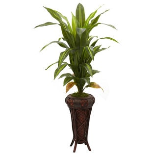 57-Inch Dracaena w/Stand Silk Plant (Real Touch)