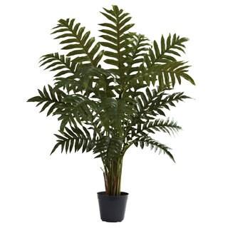 3.5-Foot Evergreen Plant