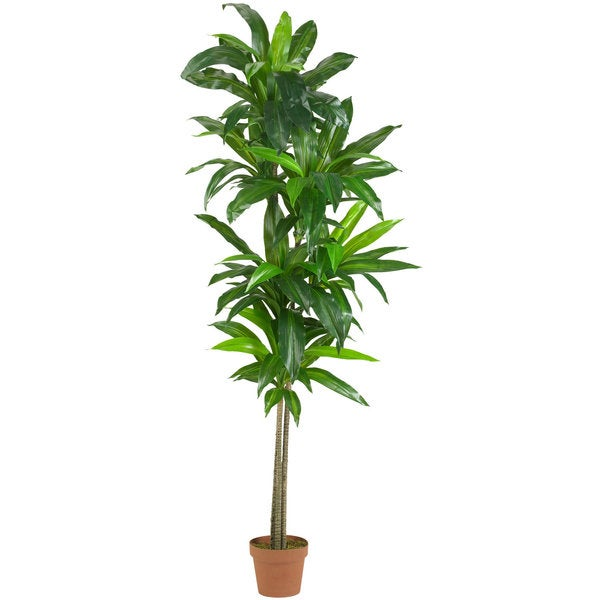 Nearly Natural Dracaena Real Touch 6-foot Silk Plant
