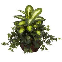 Dieffenbachia and Ivy in Decorative Planter