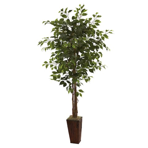 6-foot Ficus Tree and Bamboo Planter