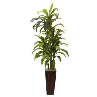 Margarintum and Bamboo Planter Arrangement