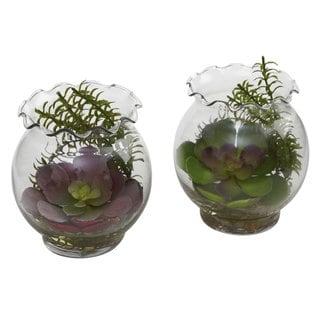 Succulent and Fluted Vase Set (Set of 2)