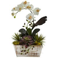 The Gray Barn Jartop Orchid and Succulent Garden White Wash Planter Decorative Plant