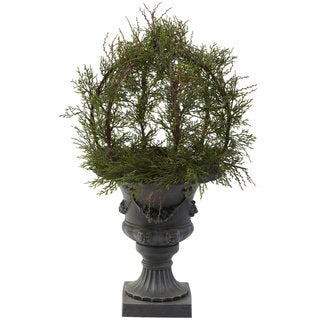 Pond Cypress Topiary/ Urn
