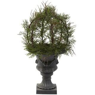 Pond Cypress Topiary/ Urn