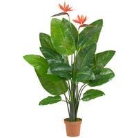 Bird of Paradise Polyester Plant