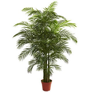 6.5-foot Areca Palm Tree