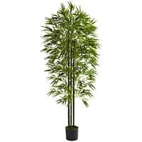 6-inch Bamboo Tree