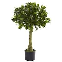 3-foot Bay Leaf Topiary