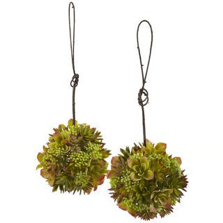 Mixed Succulent Hanging 7-inch Spheres (Set of 2)