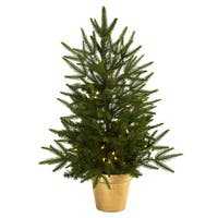 2.5-foot Christmas Tree with Planter and Clear Lights