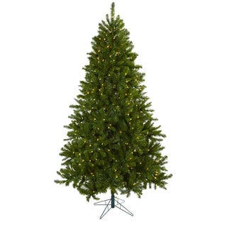 75 foot windermere christmas tree with clear lightshttpsak1 - Natural Christmas Tree