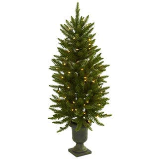 4 foot christmas tree with urn and clear lightshttpsak1 - Natural Christmas Tree