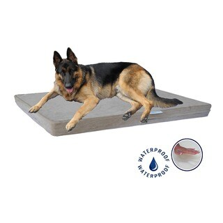 Go Pet Club Khaki Memory Foam Pet Bed