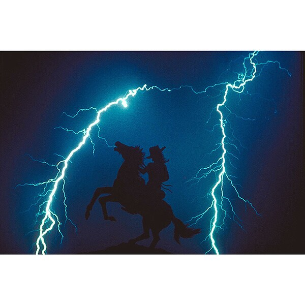 Shop Horse Lightning Silhouette Wildlife Photography