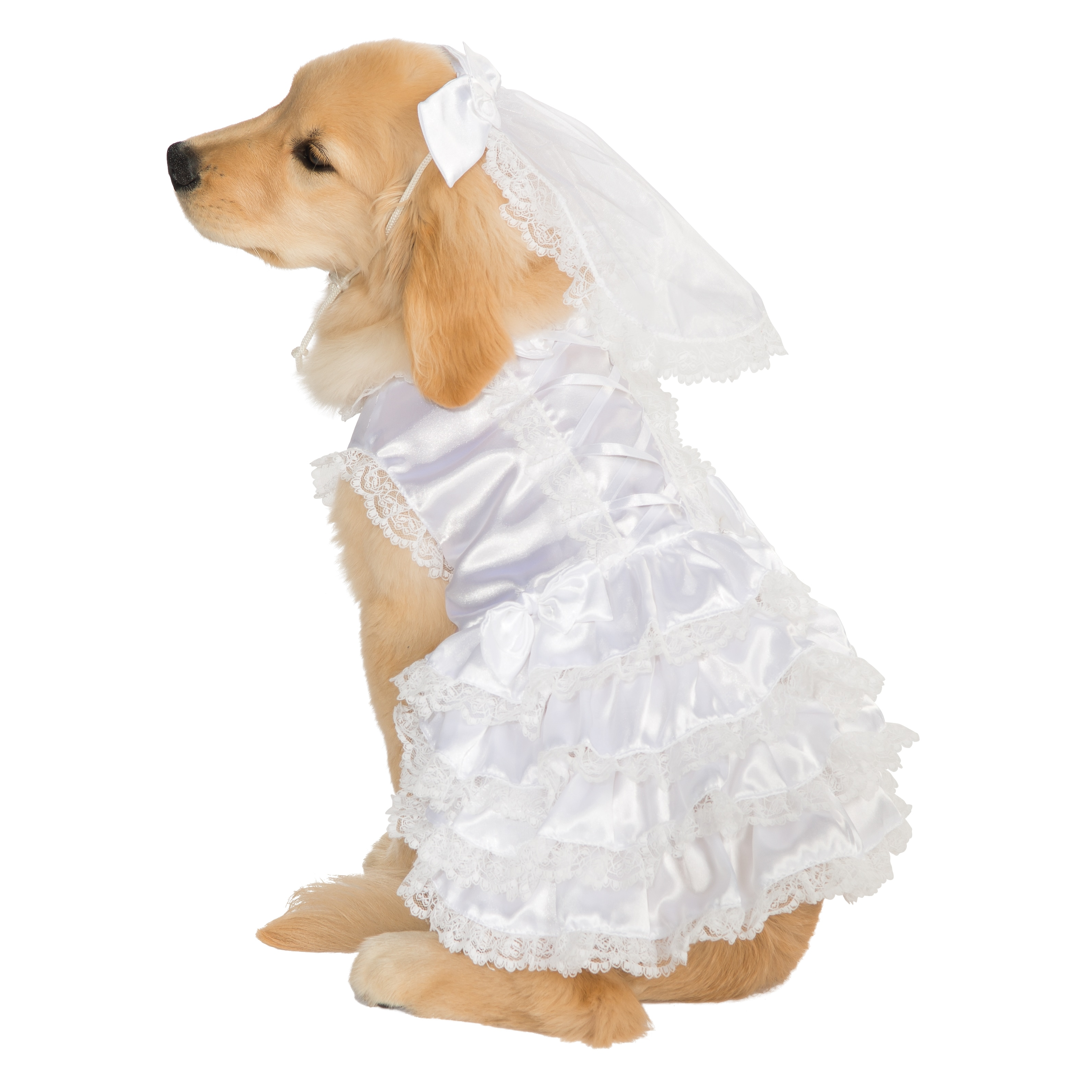 Rubie's Bride Pet Costume (Bride Medium), White
